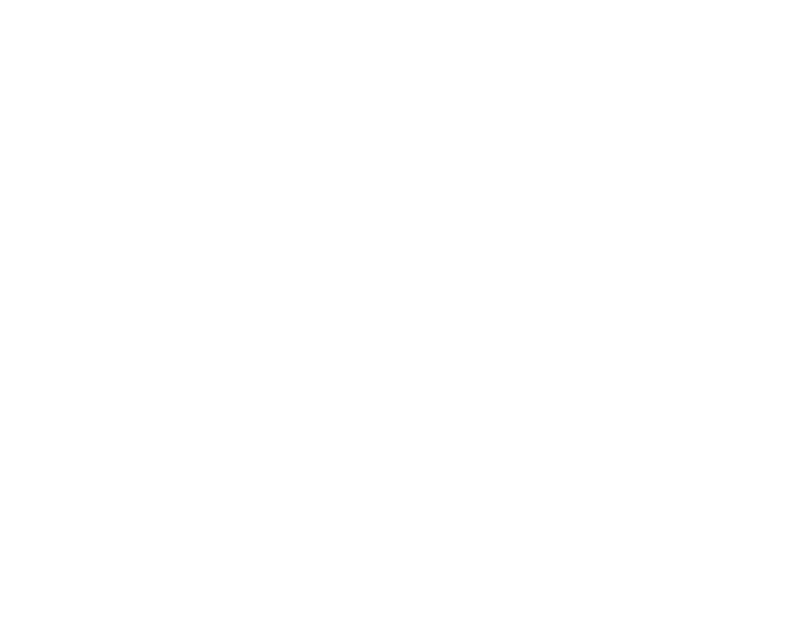 "History has demonstrated time and again that, to the degree citizens are unarmed or disarmed, government suppression and tyranny are inevitable. The Founders of the United States knew these lessons well. This is why the U.S. Constitution not only acknowledges and guarantees the ""right to keep and bear arms -- but the DUTY to be well-organized as state Militia reporting to their respective governors. But this duty, as well as the Militia, are often misunderstood. As a result, a ""gun-control lobby"" has been steadily eroding the original intent of the Founders by passing unconstitutional gun control ""laws,"" funding a standing, global army, and destroying the 300-year old Militia system established by WE THE PEOPLE. MOLON LABE -- the sister film to MIDNIGHT RIDE -- was inspired by The Sword and Sovereignty by Edwin Vieira, Jr., available at Amazon. This feature documentary explores the ""power of the sword"" and how it guarantees American's freedom."
